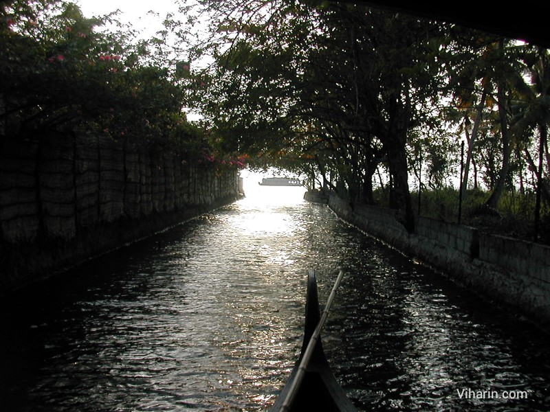 View of canal at Cocobay resort, Kumarakom