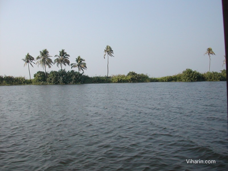 Viharin.com- Beautiful and refreshing view of Alleppey Backwaters