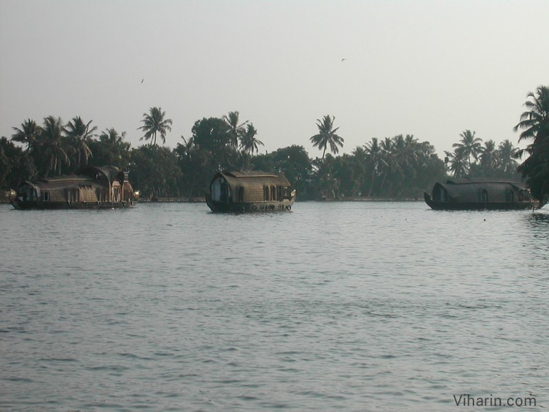 Viharin.com- Many houseboats at backwaters of Alleppey