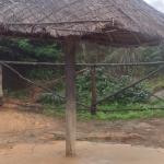 Viharin.com- A shed