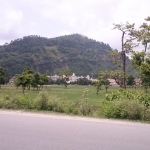 Viharin.com- Another scenery from road
