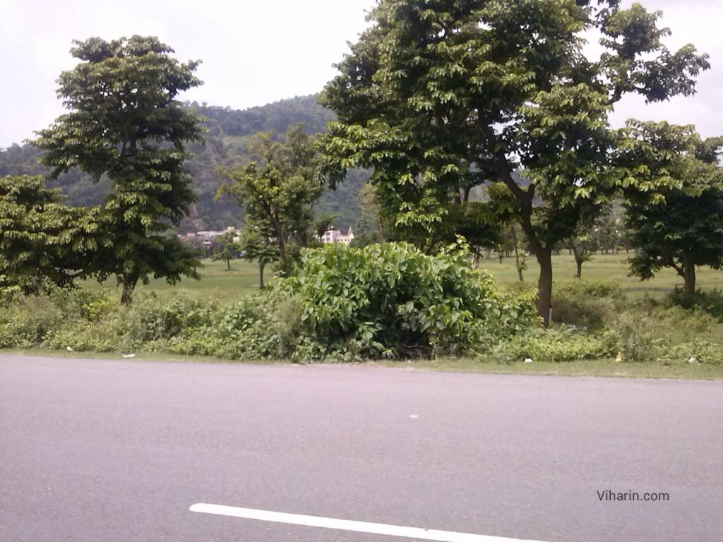 Viharin.com- Green mountains