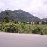 Viharin.com- View from road