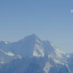 Viharin.com- The tallest of all