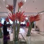 Viharin.com- Lobby
