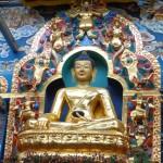 Viharin.com- Lord Buddha