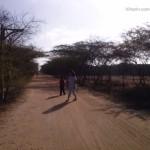 Viharin. com- Walk way to Mandvi Beach