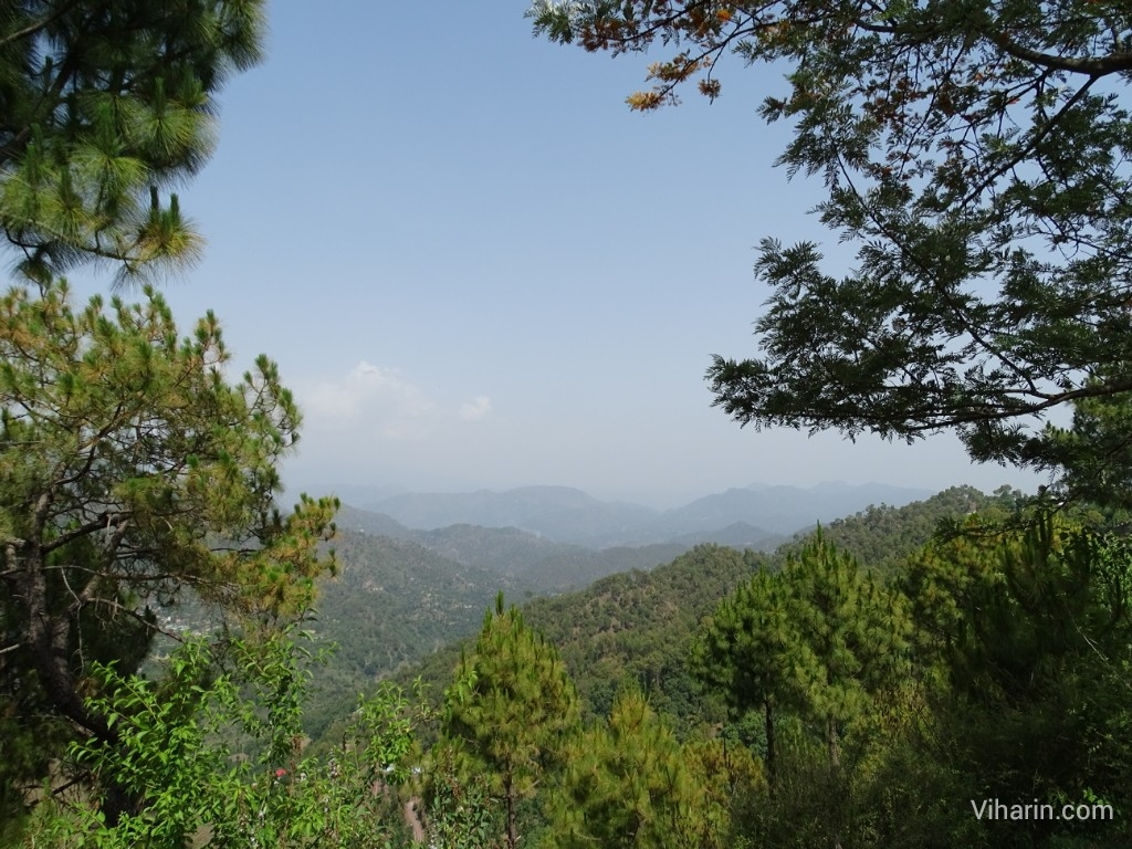 Viharin.com- Scenic view at Nahan road