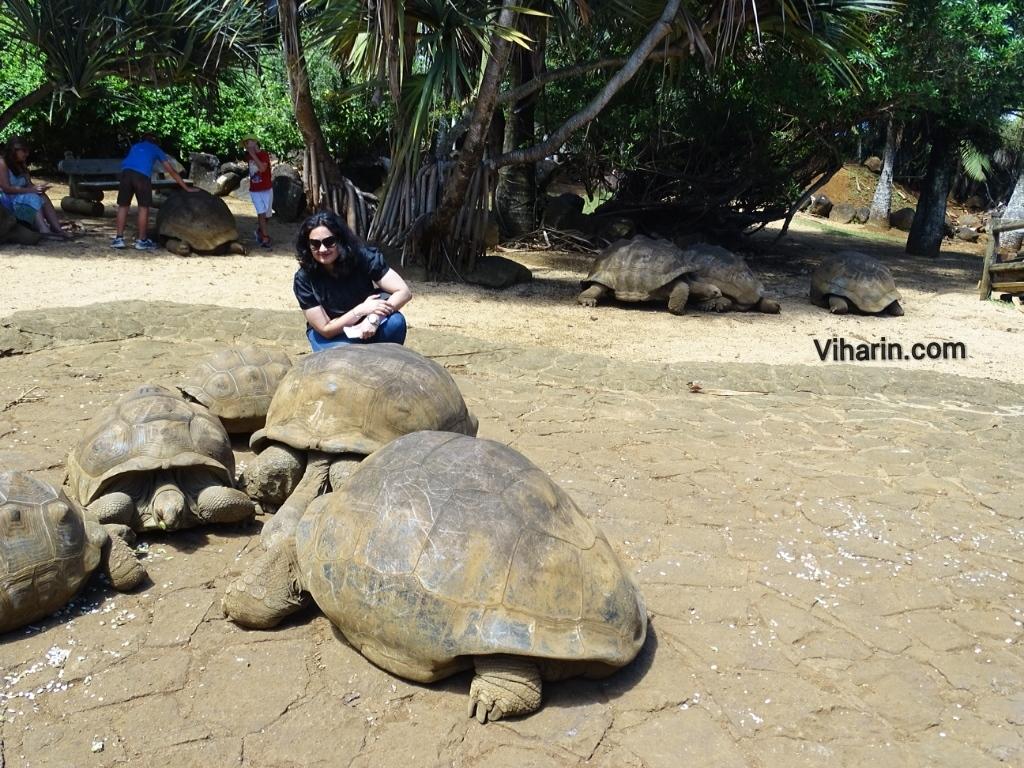Viharin.com- Myself posing with tortoise at La Vanille Nature Park
