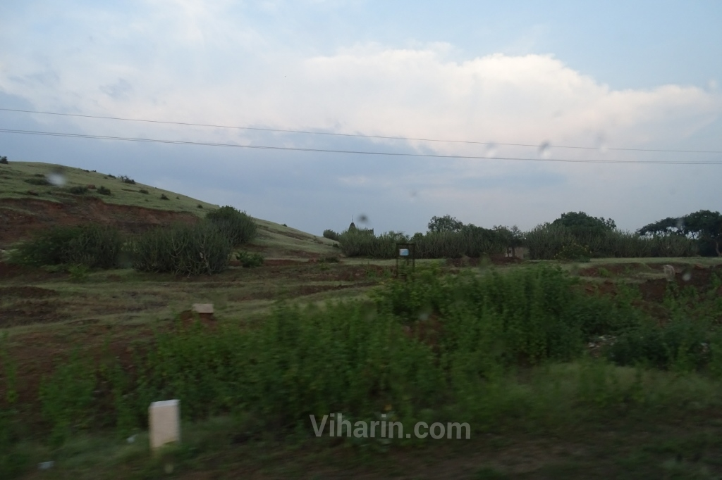 viharin-com-on-the-way-greenery