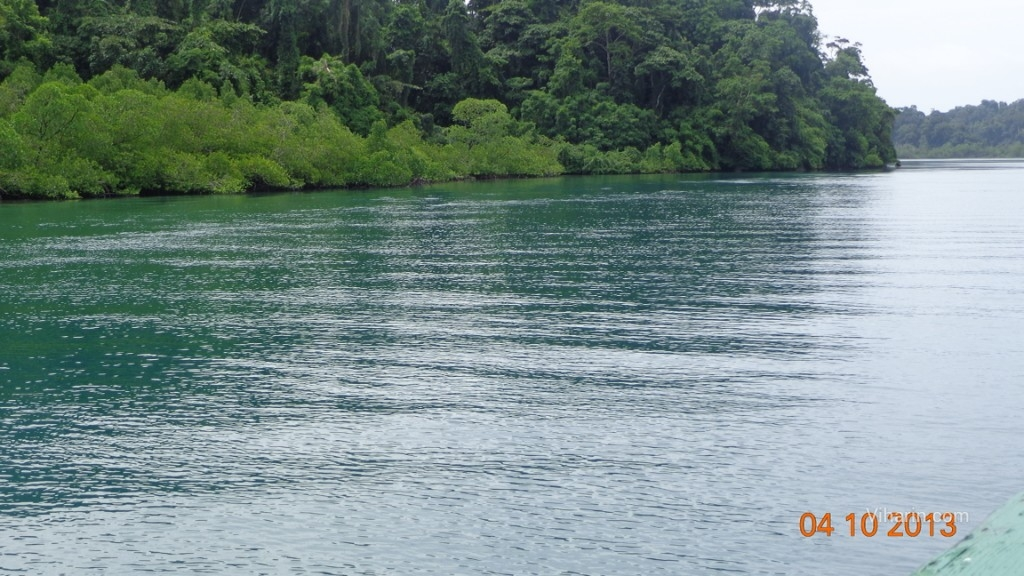 Viharin.com- Port Blair one of the top 5 beach destinations in India