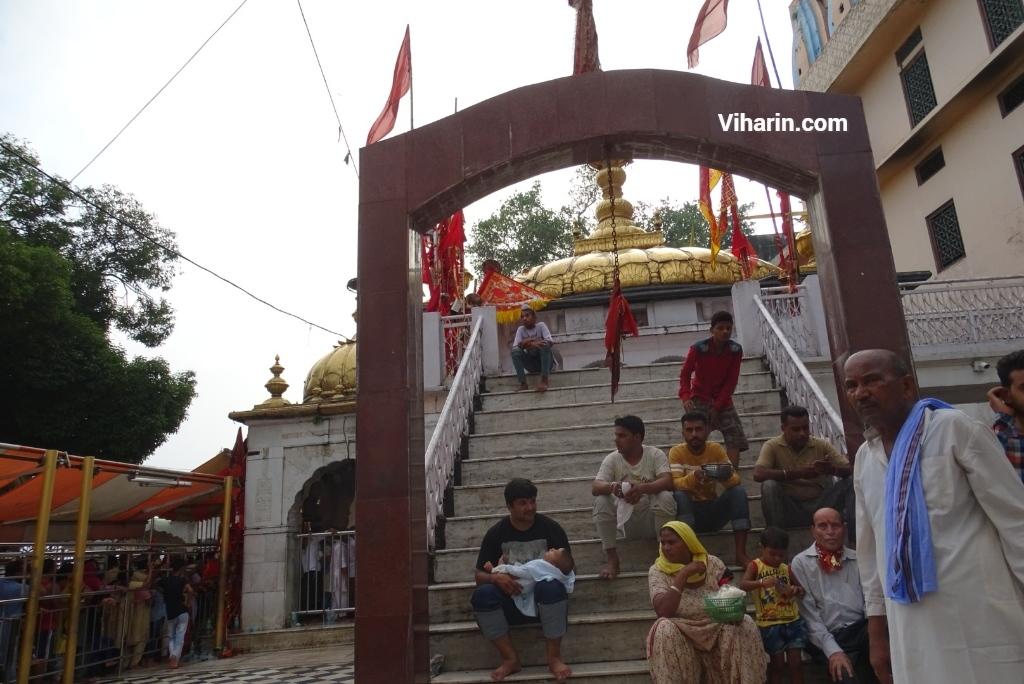Viharin.com- Bhawan complex